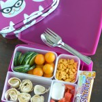 Tips to Help You Pack Kid-Friendly School Lunches