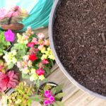 Ecoscraps Flower Pot Garden