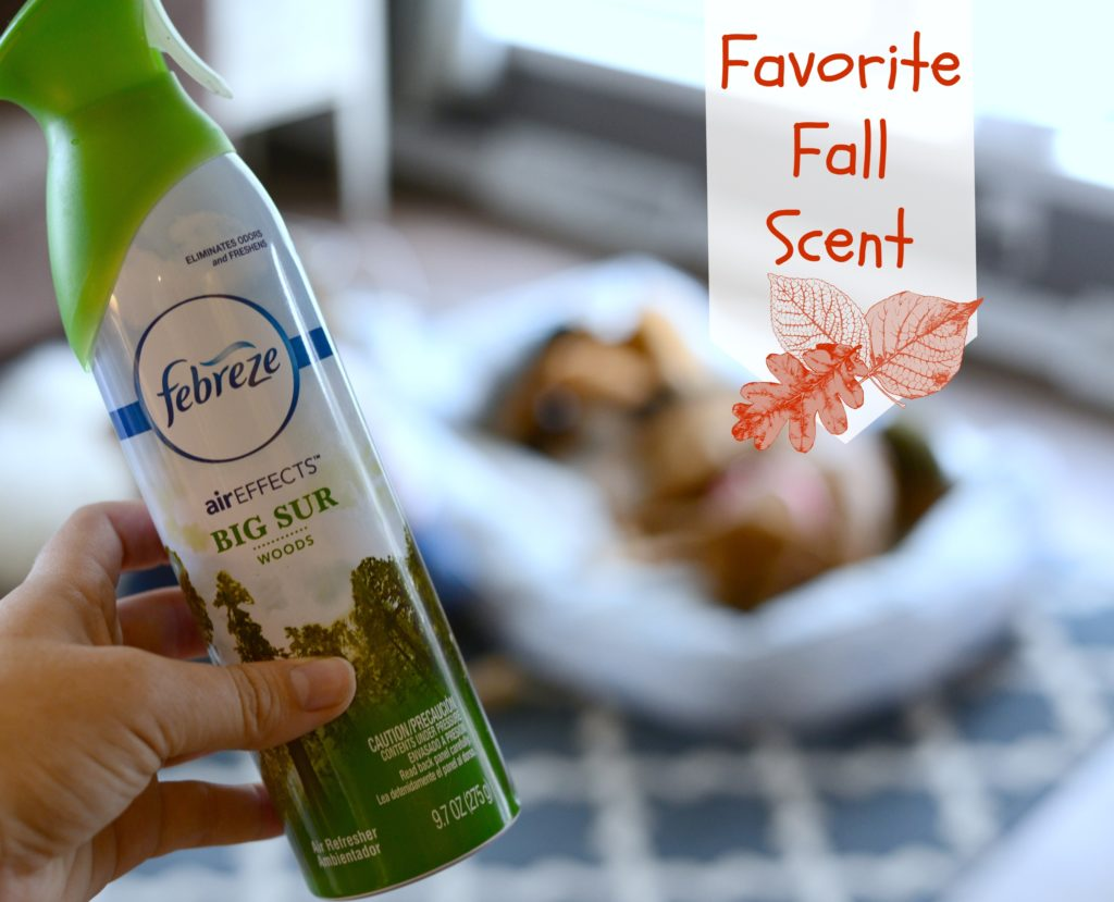 Fall Reset Tips It S Peachy Keen